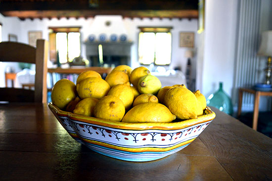 Home-grown lemons