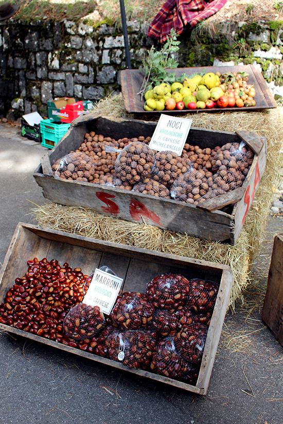 Caprese Chestnut Festival