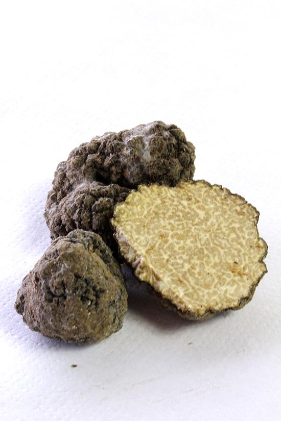 Summer truffle