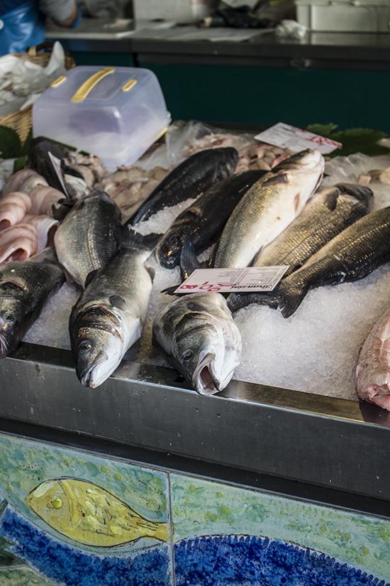 Treviso fish