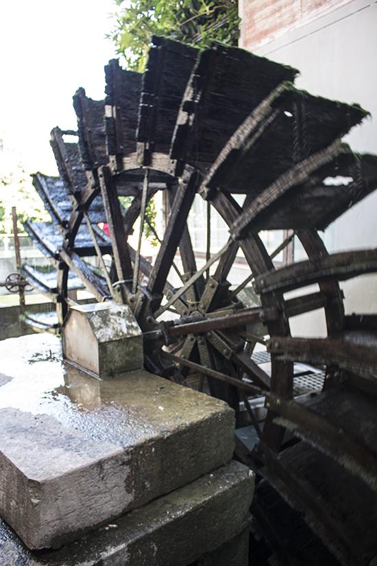 Treviso mill